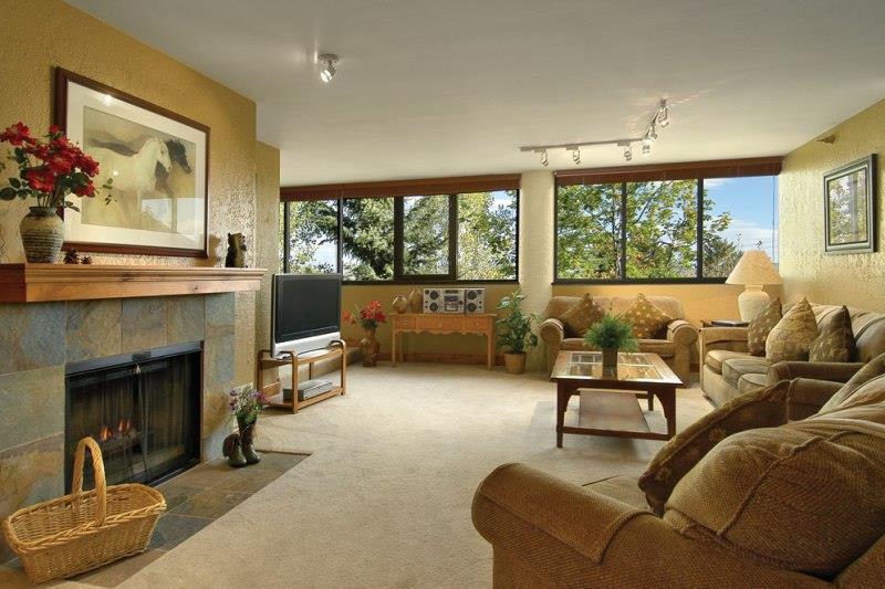Living Area 2 Premium